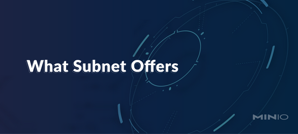 What SUBNET Offers
