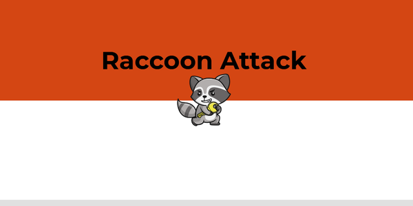The Raccoon Attack - It Is All About The Timing
